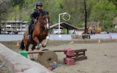 Le centre equestre